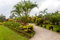 Arenal Inn grounds